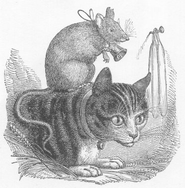1800's drawing of mouse on a cat's back.