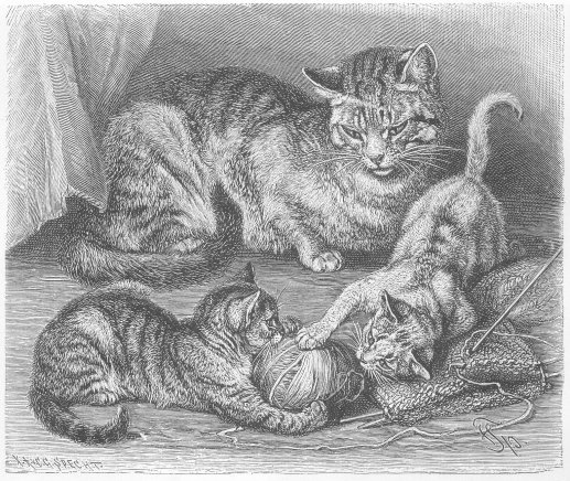 1800's drawing of cat watching kittens with a ball of yarn.
