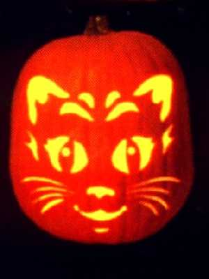 Funny cats #193. Halloween pumpkin carved like a cat face.