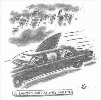 Lawyer Shark Car