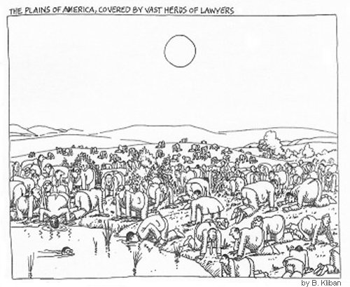 Kliban Lawyer Herds