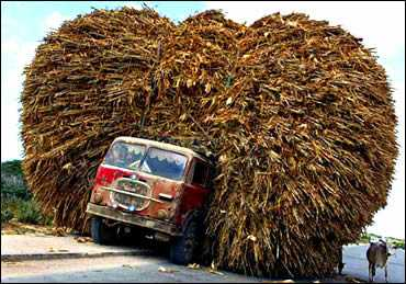 Overloaded Thatching