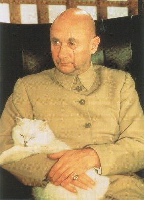 Image result for blofeld cat